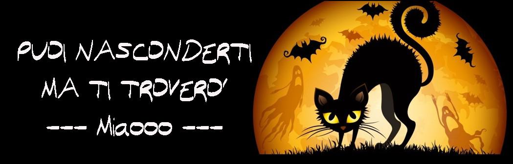 halloween-cat_miaooo