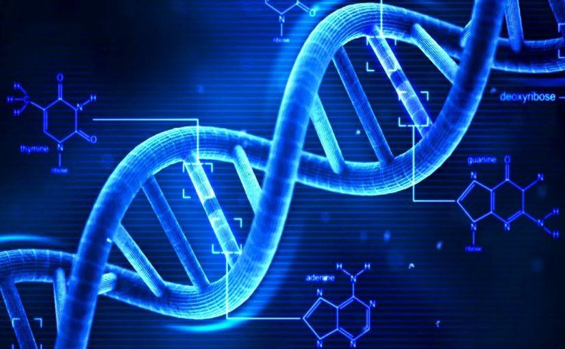 (185) DNA