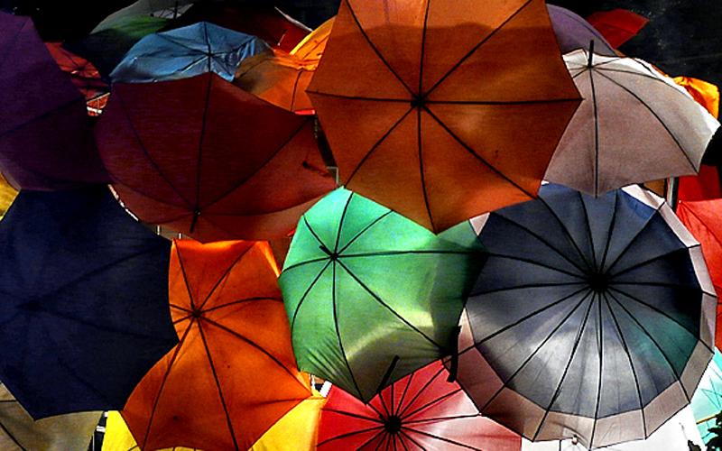 (387) Ombrelli