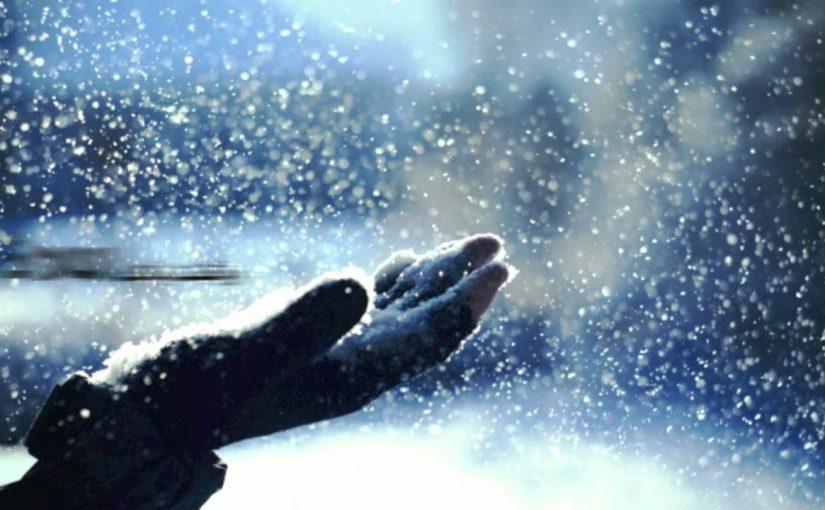 (444) Neve
