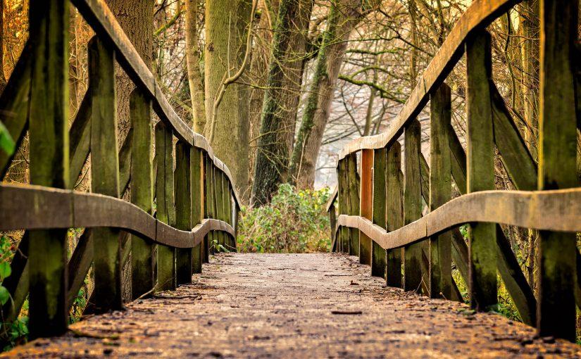 (509) Ponte